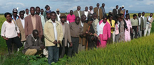 Nov 2011 training in Mwea, Kenya
